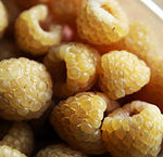 Golden yellow raspberry