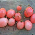 Thai Pink Egg