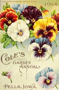 Old Pansy Seed packet