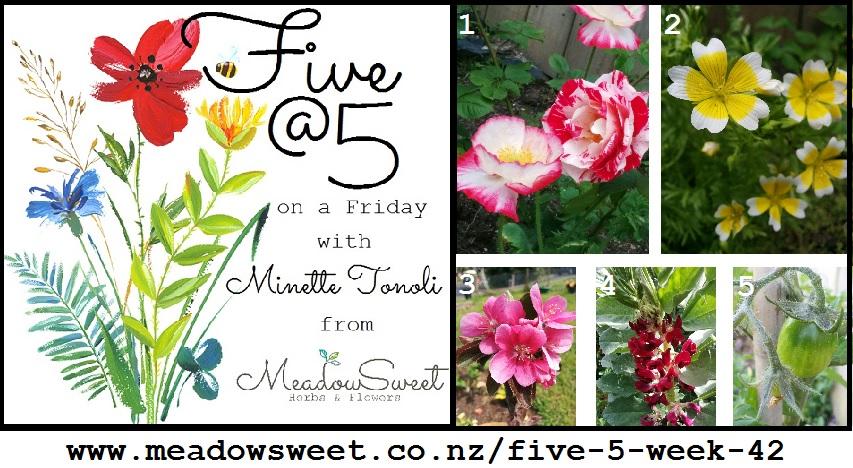 Five @ 5 : Week 42