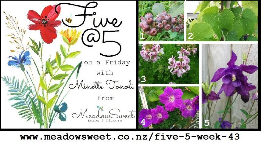 Five @ 5: Week 43