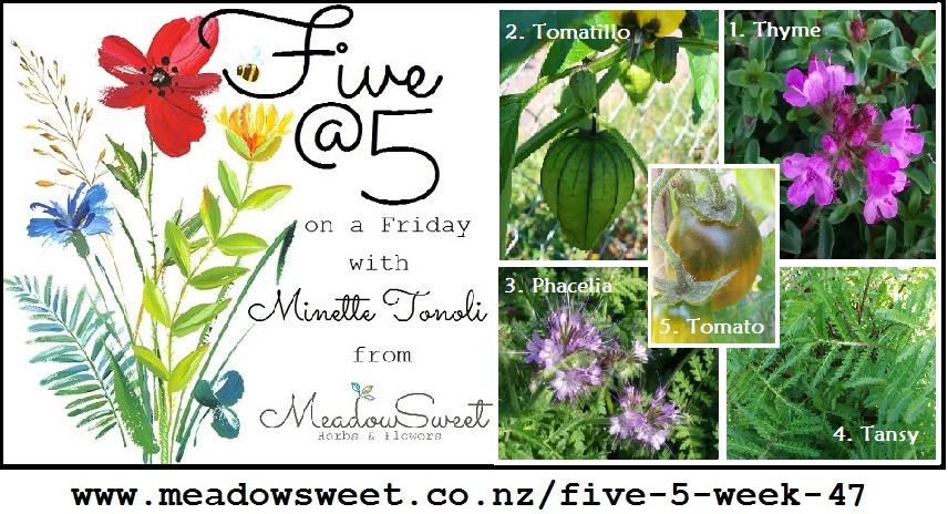 Five @ 5: Week 47