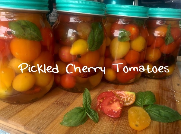 Pickled Cherry Tomatoes – How To
