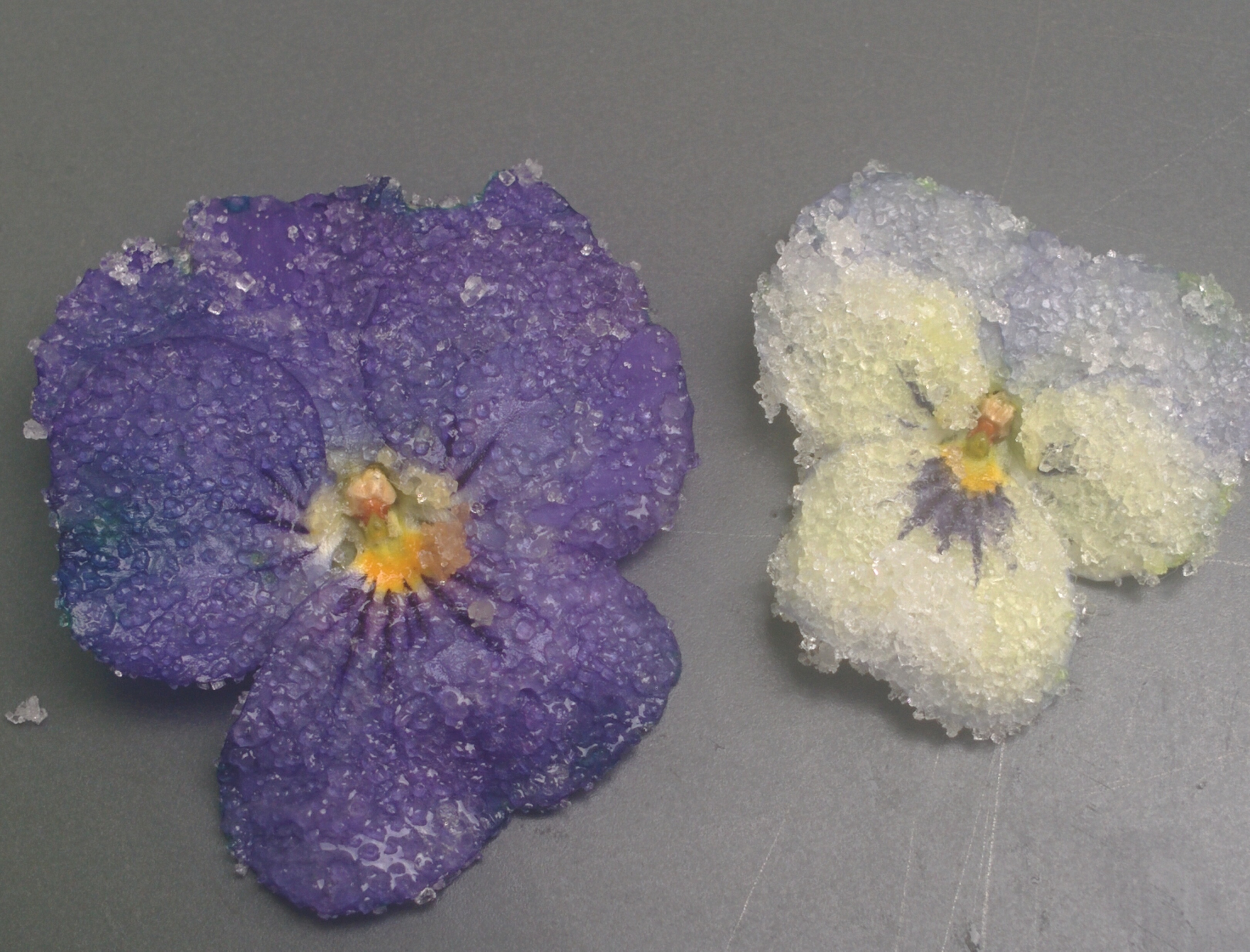 Crystallized flowers