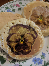 Pansy Pikelets