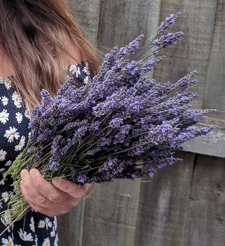 Edible Flowers #7: Lavender